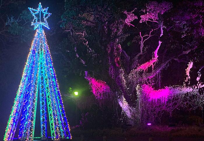 Global Truss Christmas Tree - Design Quintessence Pty Ltd