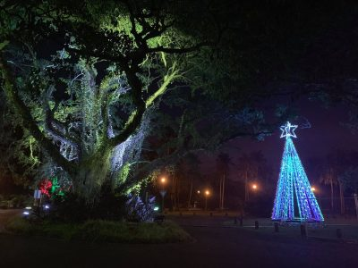 Global Truss Christmas Tree